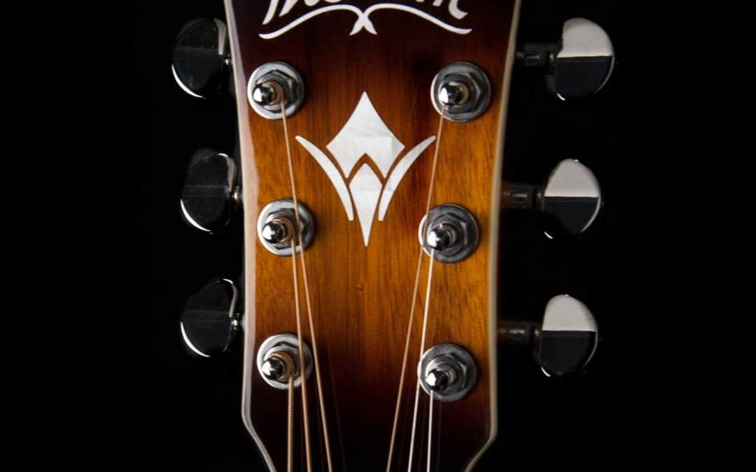 The Washburn D10S Acoustic Guitar || Best Selling Acoustic