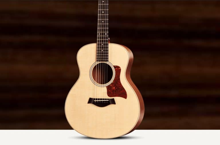 Taylor GS Mini Review – Helping You Make The Best Choice In 2021