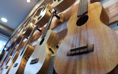 Top 4 Types Of Ukuleles | Choosing The Best One For You