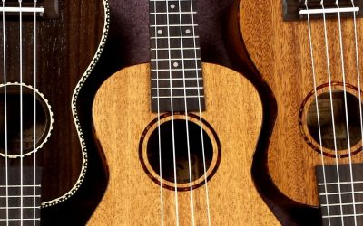 Best Ukulele To Buy (2021)